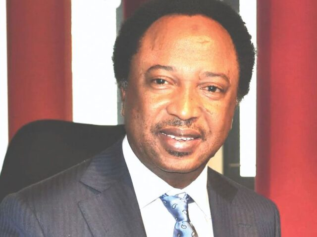 Shehu Sani carpets FG, kicks against tribalism in national appointments