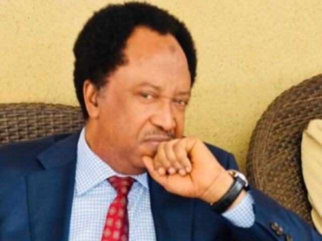 Shehu Sani blasts Presidency over excuses for unending insecurity in Kaduna